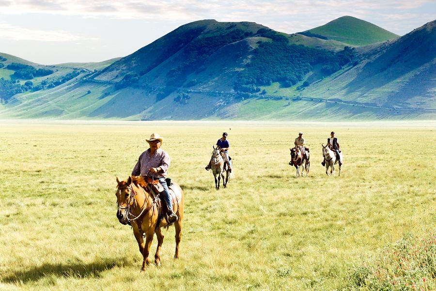marche cavalli flickr cc castgen