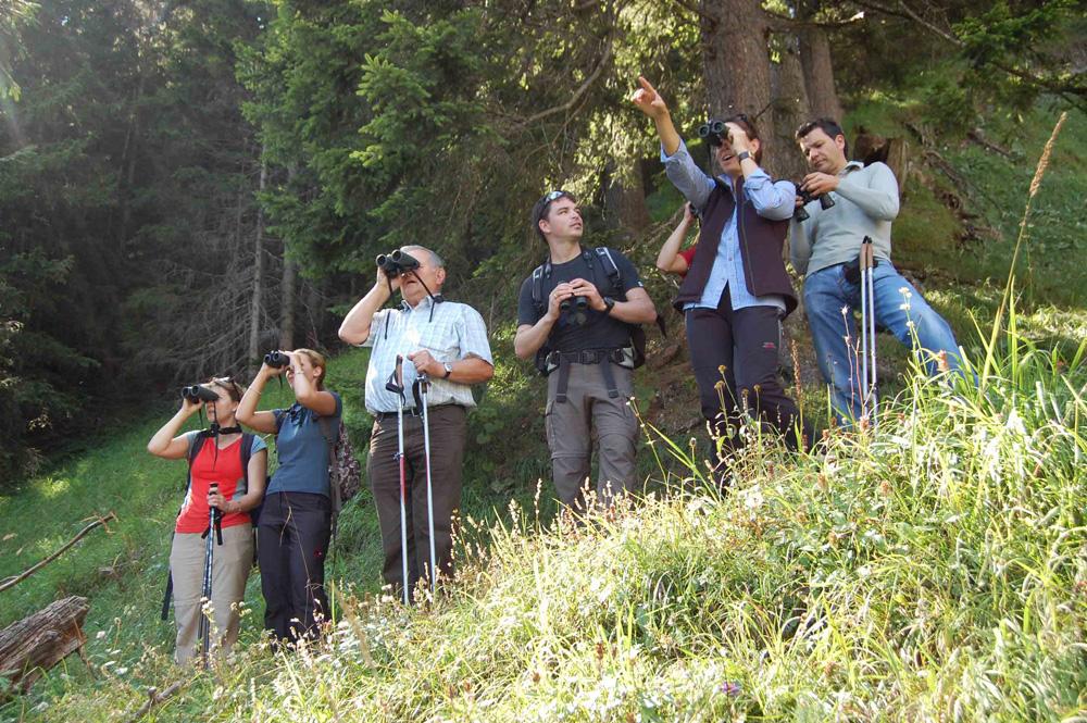 Alla scoperta della natura con i cannocchiali Swarovski nella regione di Hall-Wattens