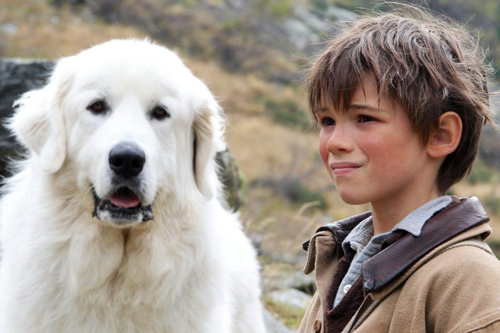 Belle e Sebastien, una storia per tutti