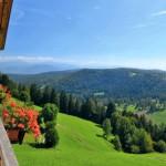 Masi Alto Adige Allergie Pollini