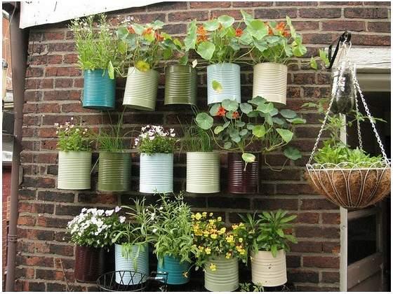 Il giardino verticale fai-da-te - SportOutdoor24