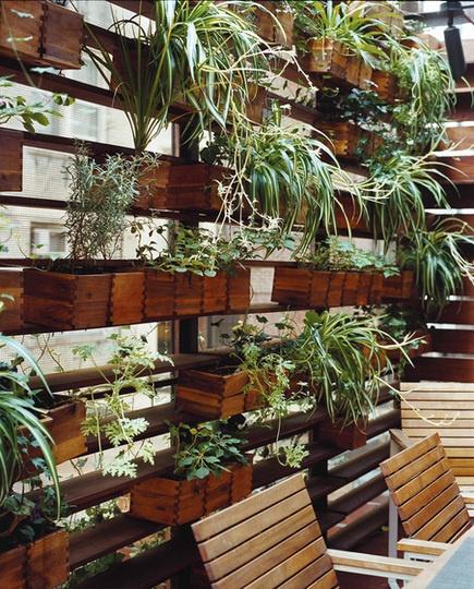 Il giardino verticale fai da te sportoutdoor24 - Giardino verticale fai da te ...