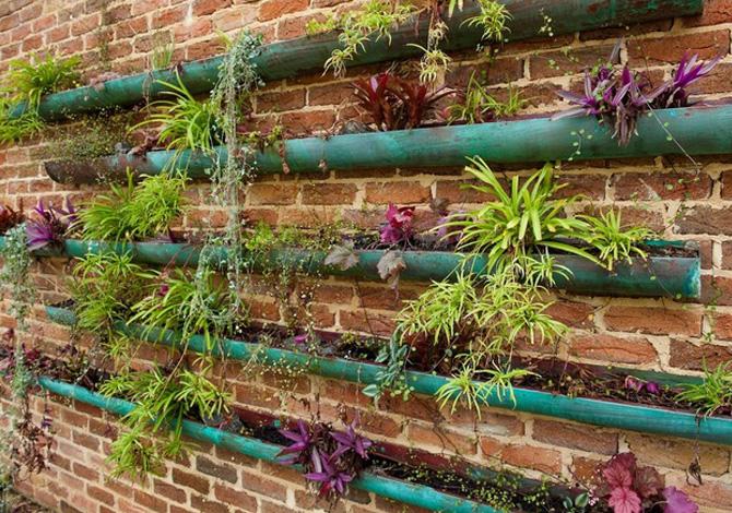 Il giardino verticale fai-da-te