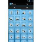 28-pocket-yoga-app-fitness