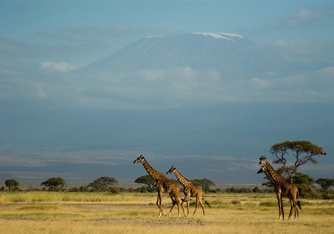 Foto: 5 parchi naturali africani da visitare assolutamente