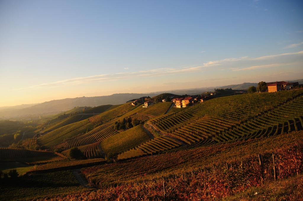 Langhe-Roero e Monferrato: il trekking del vino