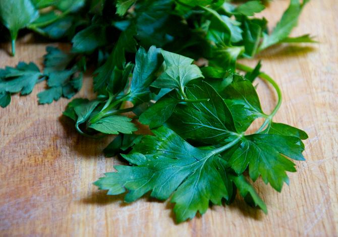 prezzemolo piante aromatiche