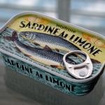 Sardine Omega 3