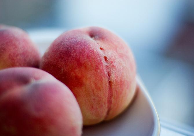 Pesche frutto