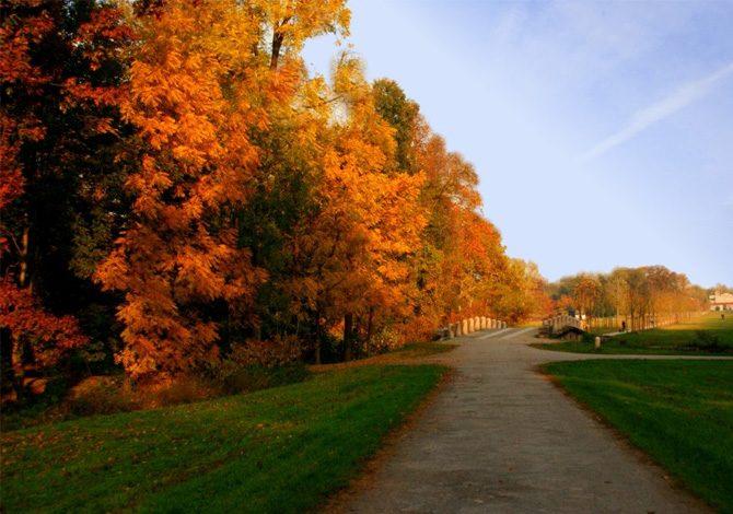 Le 10 migliori mete per il foliage