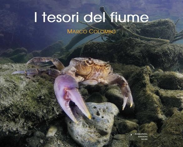 La copertina dell'ultimo libro di Marco Colombo