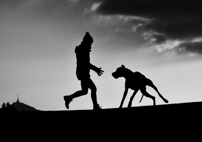 dog_trainer_00