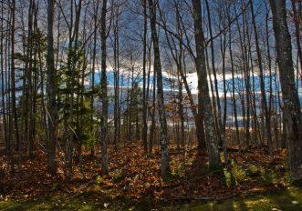Christopher Knight North Pond Shelter Eremita Maine 27 anni