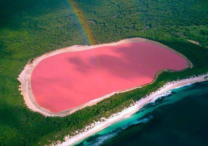 Lago rosado Hillier