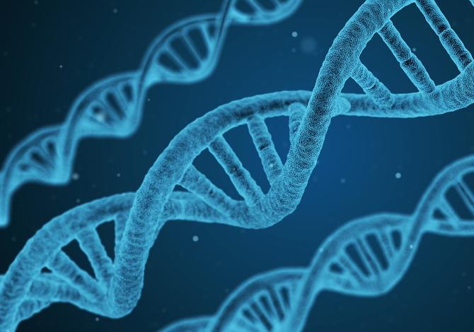 Scoperto gene causa morte improvvisa sport