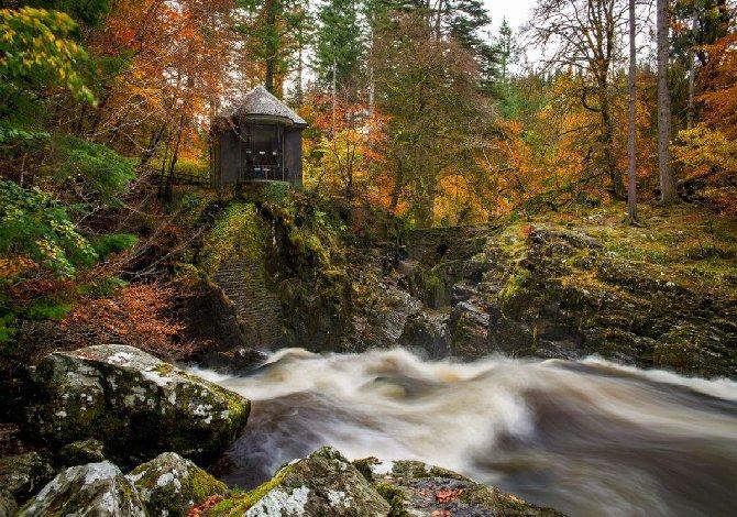 HERMITAGE foresta di Tolkien