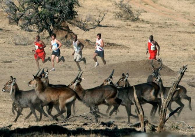 Safaricom Marathon_2