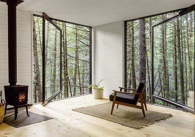 casa-albero-natura-bosco-interno