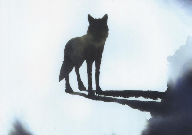 il-cane-il-lupo-e-dio-il-libro-di-folco-terzani-che-insegna-a-sopravvivere-nella-natura-selvaggia-consigli-regali-natale