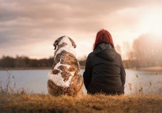 avere un cane migliora la vita