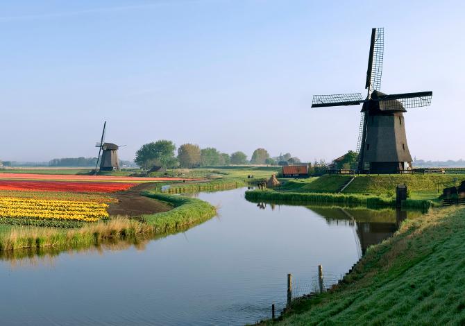 In Olanda in bici tra arte e tulipani