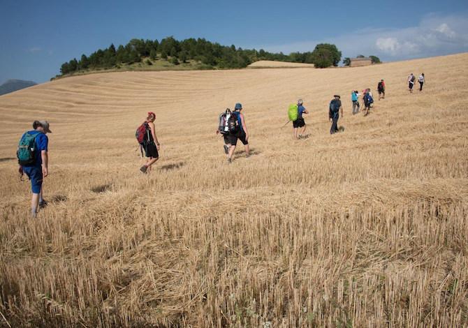 Cammino-Terre-Mutate-Tappa-1-Fabriano-Matelica-campi