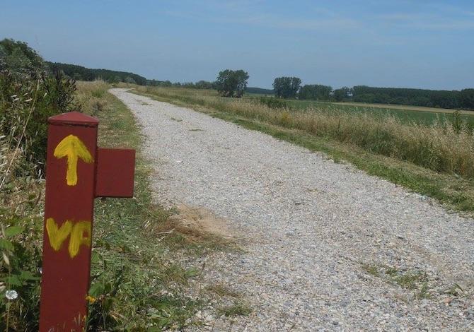 la-nuova-via-italiana-al-cammino-di-santiago-da-aquileia-a-genova-la-via-postumia-segnaletica