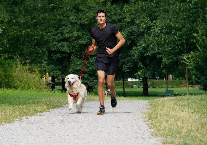 La-corsa-con-il-cane-fa-bene-anche-al-cane-Bob-Martin-Dog-Run-a-Milano