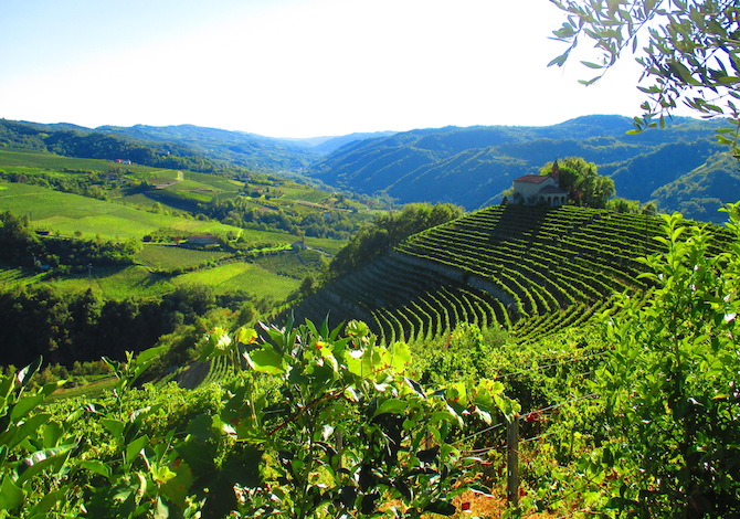 trail-moscato-langhe