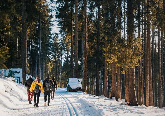 Consigli camminare sulla neve senza ciaspole