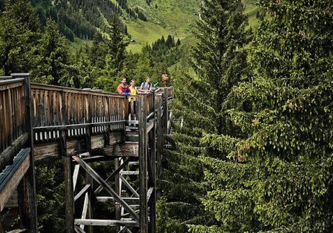 saalbach-sommer-outdoor-baumzipfelweg-016