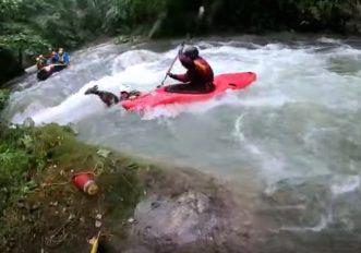cucciolo-capriolo-salvato-fiume