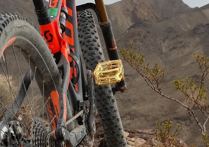 cambiare i pedali della mountain bike