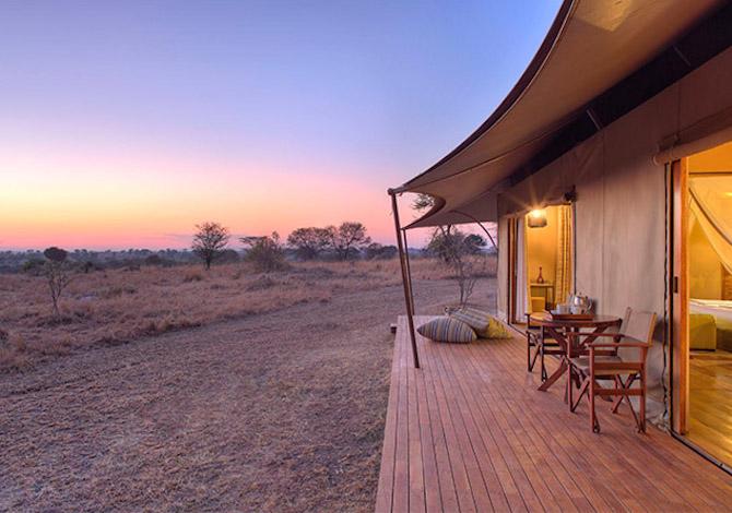 nel-parco-del-serengeti-ce-un-microbirrificio-a-energia-solare
