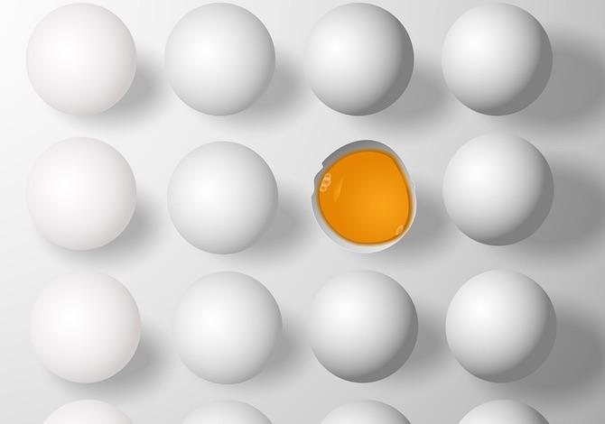 un-uovo-al-giorno-non-fa-male