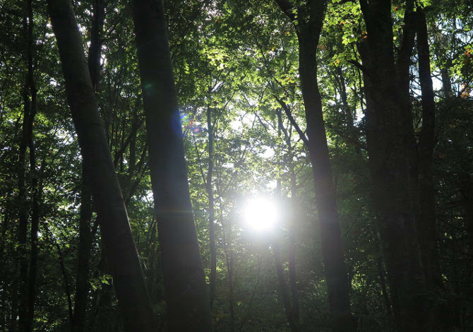 Il Parco del respiro in Paganella