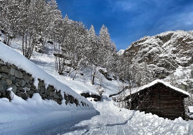 Tre nuove piste per ciaspole a Valtournenche e Breuil-Cervinia