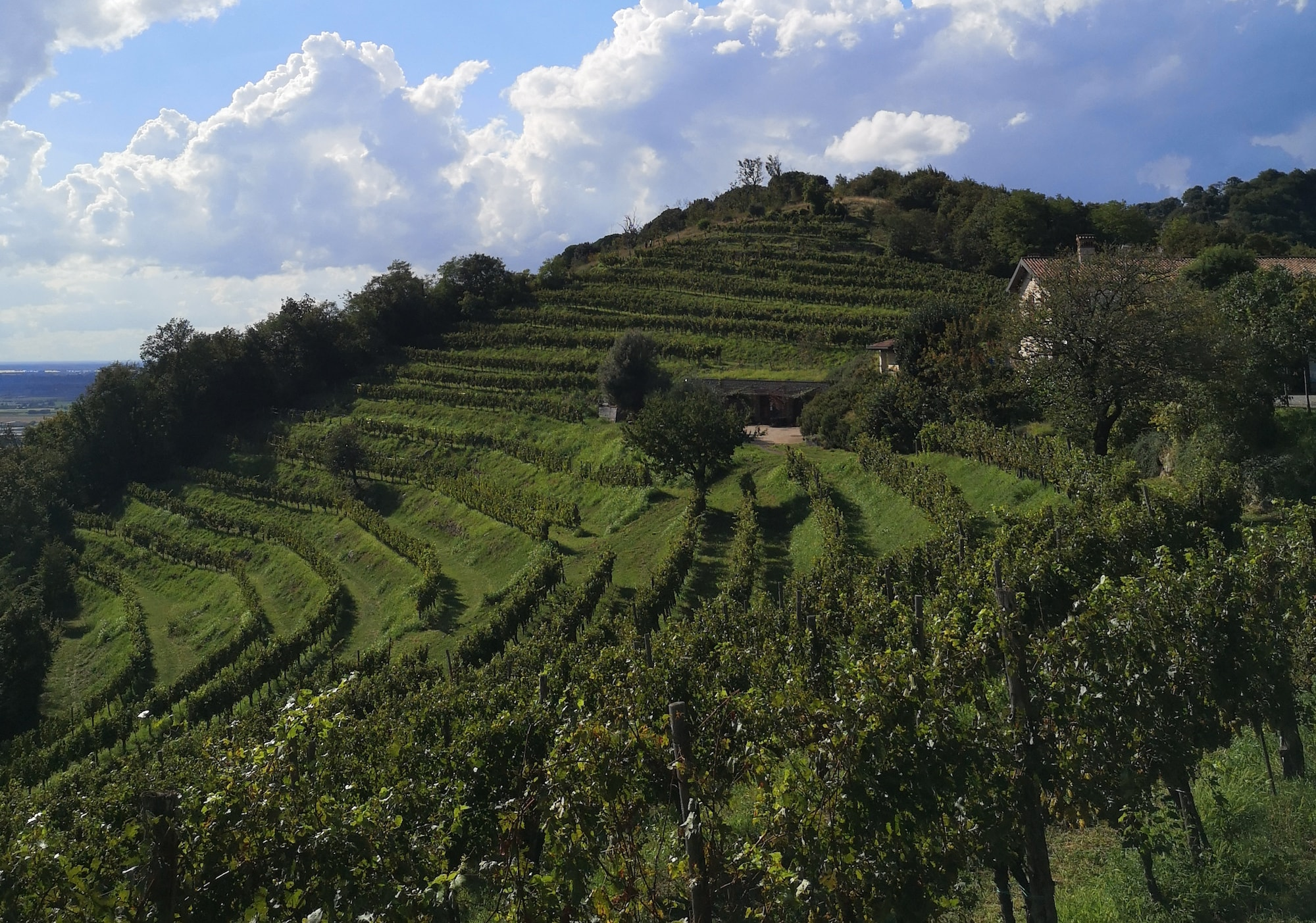 escursioni-in-lombardia-la-traversata-del-monte-orfano-in-franciacorta-sentiero