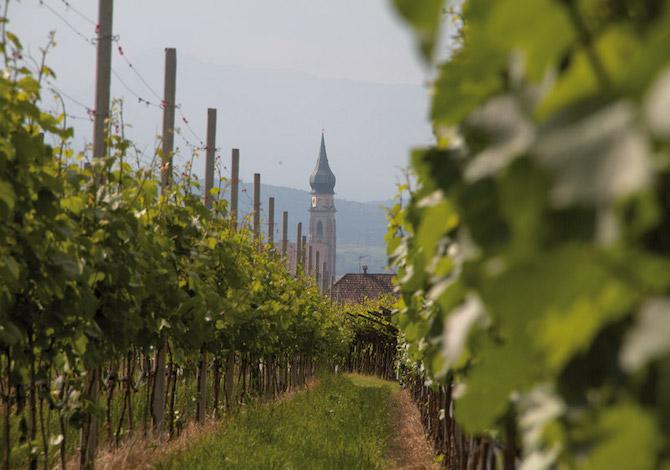 7-cammini-poco-famosi-in-italia-per-scoprire-i-viaggi-a-piedi-cammino-san-giacomo-trentino