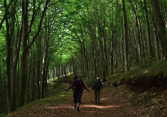7-cammini-poco-famosi-in-italia-per-scoprire-i-viaggi-a-piedi-san-francesco-di-paola-calabria