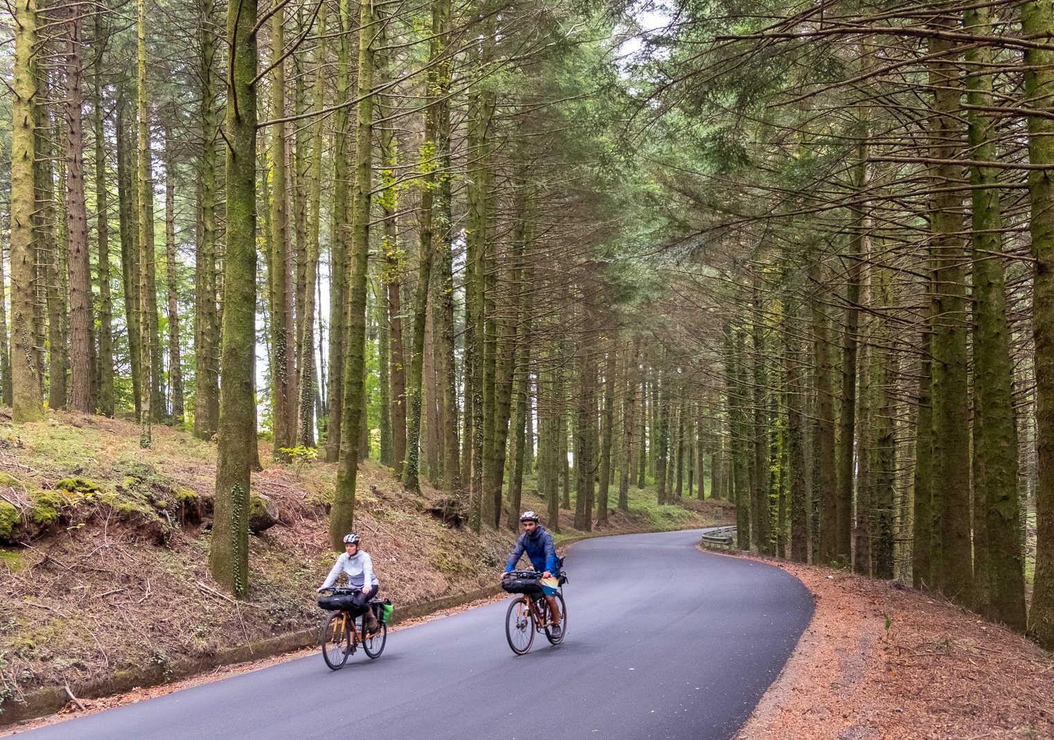 Italian Green Road Award 2021