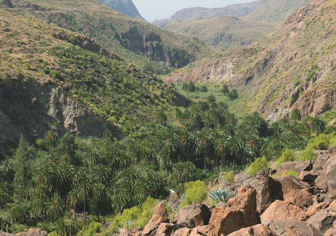 il-cammino-di-santiago-alle-canarie-trekking