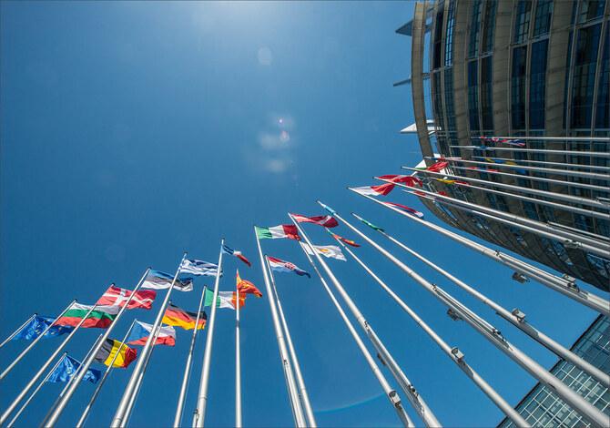 differenze tra il green pass europeo e la certificazione verde italiana