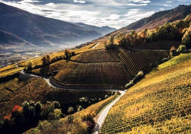 cosa-fare-in-estate-in-svizzera-5-cose-sorprendenti-del-canton-vallese