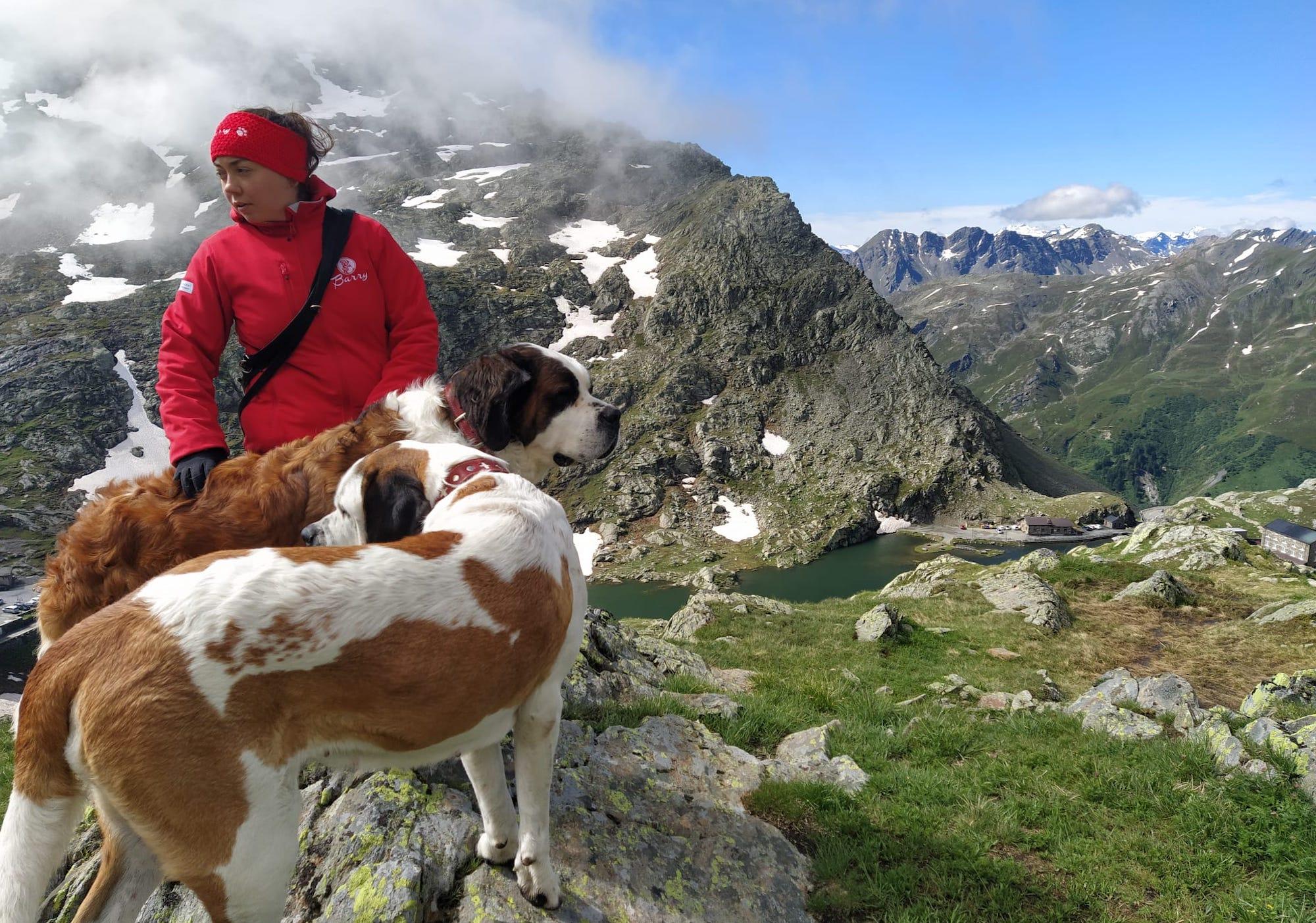 escursioni-in-svizzera-sentieri-gran-san-bernardo-con-i-cani-foto-martino-de-mori-sportoutdoor24