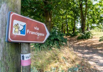francigena-fidenza-festival-dal-16-al-19-settembre